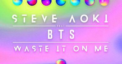 BTS - Waste It On Me (Slushii Remix)