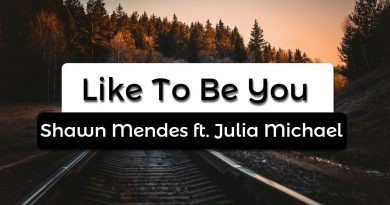 Shawn Mendes, Julia Michaels - Like To Be You
