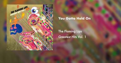 The Flaming Lips - You Gotta Hold On