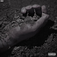 Bones - PalmDrive