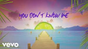 Sigala, Shaun Frank, Flo Rida - You Don't Know Me ft. Delaney Jane