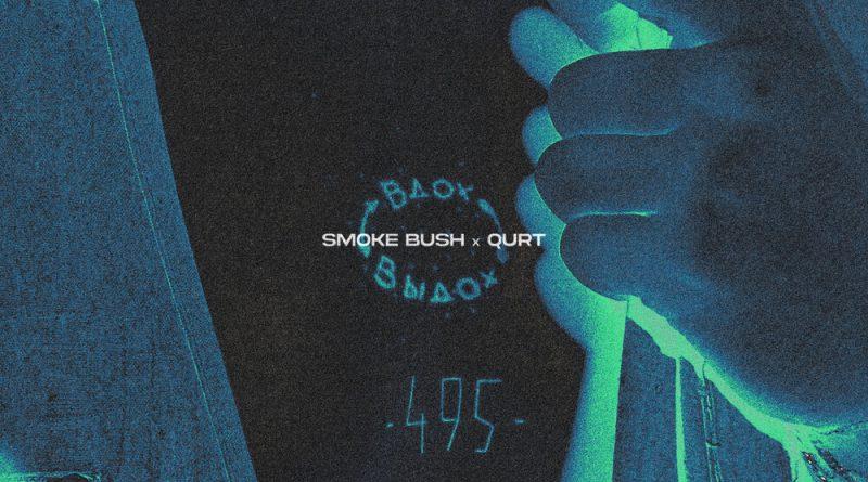 Smoke Bush, qurt