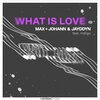 Max & Johann & Jayddyn & Indiigo - What Is Love