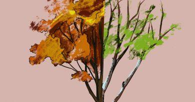 Idris & Leos - Осень